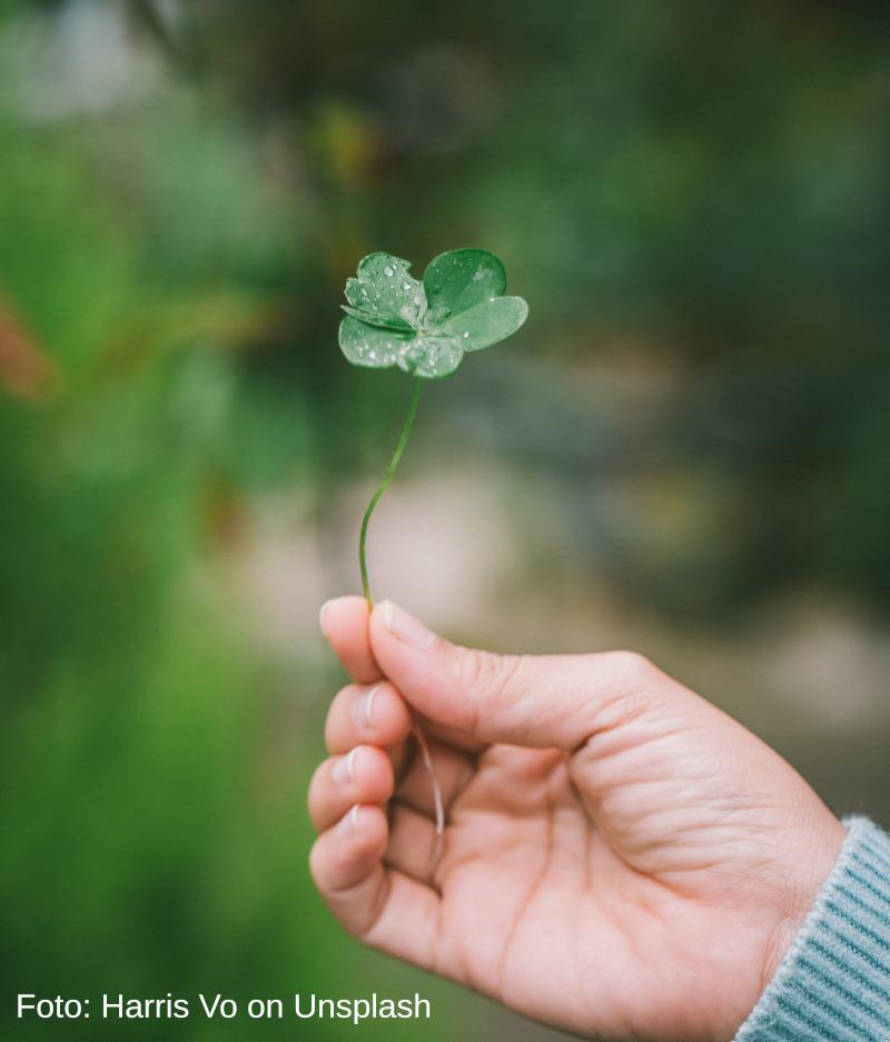 Wenn Glück zum Wunder wird