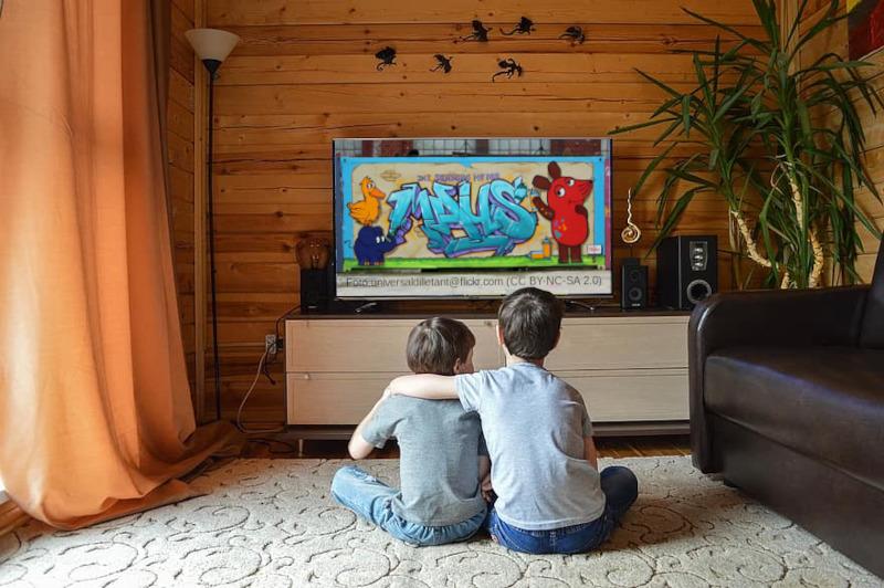 Fernsehen bildet
